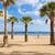 palmen · strand · tenerife · Spanje · populair - stockfoto © neirfy