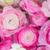 kleurrijk · bloemen · aquarel · boeket · vector - stockfoto © neirfy