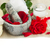 spa settings with fresh roses on white stock photo © neirfy