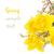 grande · macio · páscoa · isolado · branco · silhueta - foto stock © neirfy