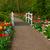 石 · パス · 庭園 · 春の花 · 花 · 春 - ストックフォト © neirfy