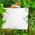 notebook · ricette · erbe · verde · libro · legno - foto d'archivio © neirfy