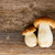 boletus mushrooms on wooden background stock photo © neirfy