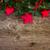 rosso · Natale · frutti · di · bosco · confine · rami · sfondo - foto d'archivio © neirfy