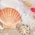 deniz · tuzu · havlu · plaj · fırçalamak · sağlık · güzellik - stok fotoğraf © neirfy