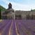 修道院 · ラベンダー畑 · フランス · 世界 · 有名な - ストックフォト © neirfy