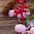 vrolijk · christmas · boeg · wol · sokken · evergreen - stockfoto © neirfy