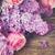 сирень · цветы · роз · букет · свежие · Purple - Сток-фото © neirfy