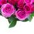 buquê · fresco · rosa · rosas · magenta · folhas - foto stock © neirfy