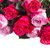 暗い · ピンク · バラ · 粘土 · ポット - ストックフォト © neirfy