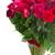 rouge · fleurs · bouquet · verre · vase · lumineuses - photo stock © neirfy