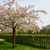 keukenhof garden netherlands stock photo © neirfy