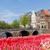 канал · кольца · Амстердам · весны · день · Нидерланды - Сток-фото © neirfy