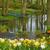 春 · 庭園 · オランダ · カラフル · 川 · 風景 - ストックフォト © neirfy
