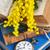 velho · livros · vintage · relógio · de · bolso · antigo · livro - foto stock © neirfy