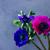 anemones flowers on stone background stock photo © neirfy