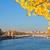 alexandre iii bridge and eiffel tower paris stock photo © neirfy