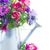 közelkép · pipacs · rügy · virág · levél · szépség - stock fotó © neirfy