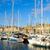 mesire · Fransa · görmek · ikonik · su · kule - stok fotoğraf © neirfy