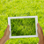 holding tablet against spring green background stock photo © neirfy
