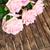rosa · fioritura · rose · legno · san · valentino · due - foto d'archivio © neirfy