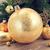 evergreen · albero · palla · ramoscello · felice - foto d'archivio © neirfy