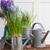 jardim · ferramentas · pote · grama · trabalhar - foto stock © neirfy
