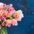 букет · розовый · Tulip · стекла · ваза · изолированный - Сток-фото © neirfy
