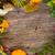 fall frame stock photo © neirfy