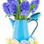 blue hyacinth stock photo © neirfy