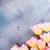 tavasz · fejléc · copy · space · rózsaszín · virág - stock fotó © neirfy