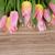 jacinto · vintage · flores · da · primavera · dom · azul - foto stock © neirfy
