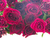 букет · роз · цветы · темно · свадьба · пару - Сток-фото © neirfy