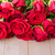 red blooming roses on wood stock photo © neirfy