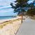 sahil · baltık · denizi · kumul · çim · gökyüzü · fırtınalı - stok fotoğraf © neirfy