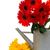 gerbera flowers in watering can stock photo © neirfy
