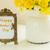 fresh spring daffodils stock photo © neirfy