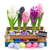 colorful hyacinth flowers with eggs stock photo © neirfy