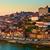 zonsondergang · Portugal · skyline · brug · voorgrond · water - stockfoto © neirfy