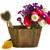 saksı · pot · güzel · pembe · sonbahar · yalıtılmış - stok fotoğraf © neirfy