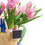 hyacinth and tulip flowers with easter eggs stock photo © neirfy