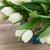 fraîches · coloré · tulipes · bouquet · ruban · arc - photo stock © neirfy