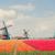 tradycyjny · starych · Niderlandy · holenderski · wiatrak · niebo - zdjęcia stock © neirfy