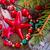 ソフト · 冬 · 編まれた · セーター · キャンドル - ストックフォト © neirfy