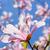 магнолия · дерево · Blossom · красивой · весны · время - Сток-фото © neirfy