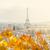 panorama · Parijs · Frankrijk · Eiffeltoren · vogels · oog - stockfoto © neirfy