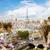 Notre · Dame-katedrális · tető · Franciaország · város · Párizs · templom - stock fotó © neirfy