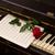 pianotoetsen · lied · steeg · bloem · muziek · piano - stockfoto © neirfy