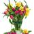 narcissen · tulpen · vers · witte · voorjaar · groeiend - stockfoto © neirfy