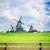 holandés · viento · tradicional · paisaje · molino · de · viento · otono - foto stock © neirfy